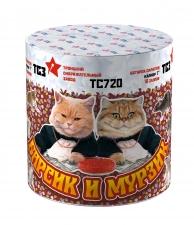 Мурзик и Барсик ТС720