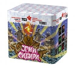 Огни Сибири ТС851